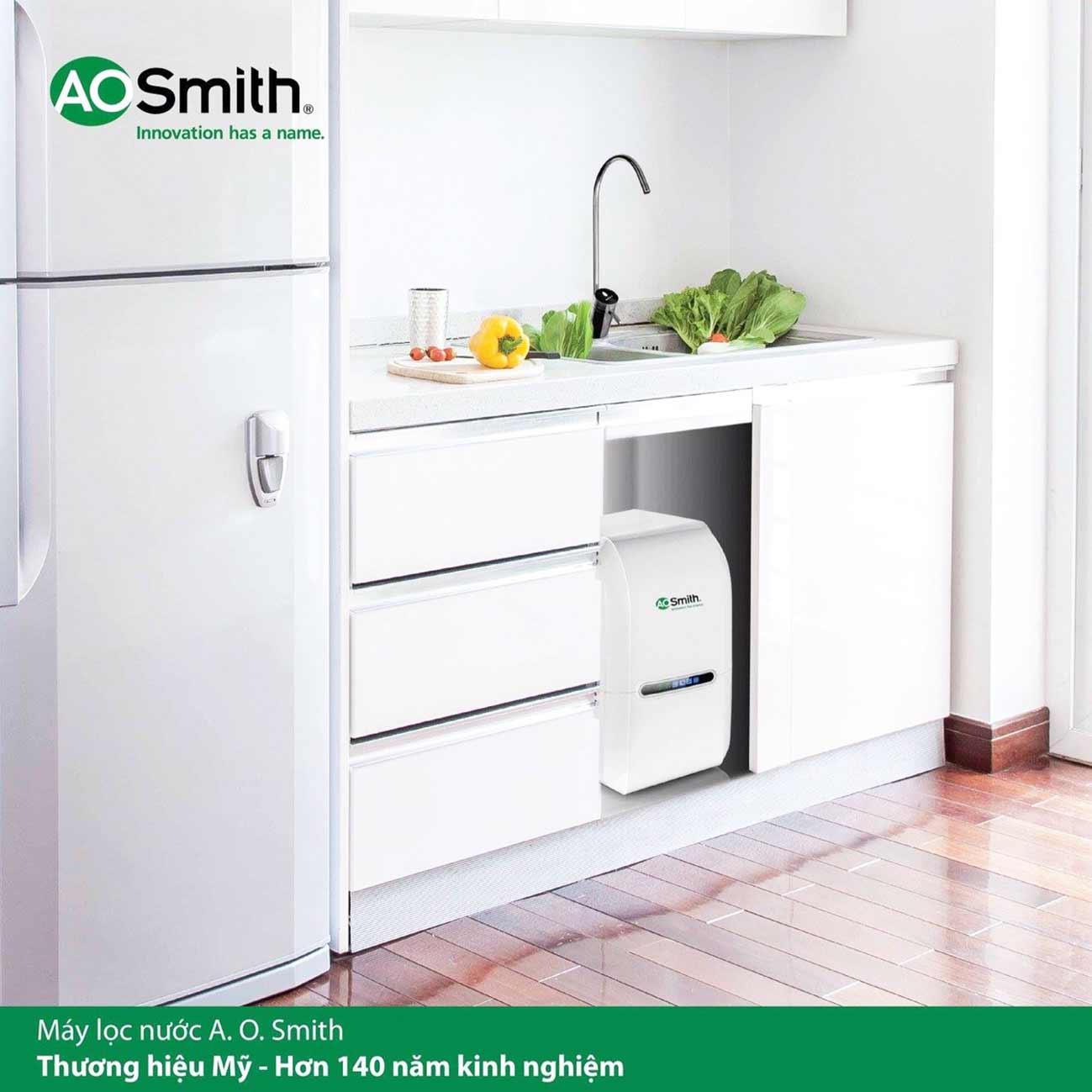Hình lắp đặt của máy lọc Aosmith AS2 dưới gầm bếp
